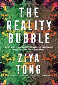 Reality bubble